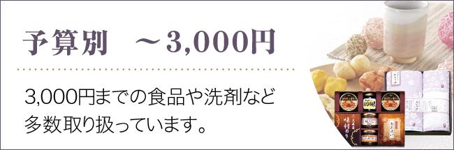 ~3000円