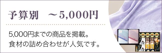 ~5000円